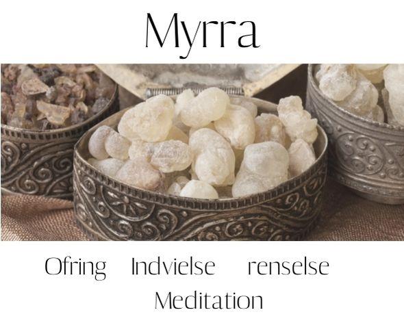 Udvidede resultater når der søges efter Myrra på google