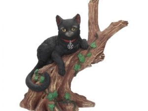 Onyx Cat in Tree