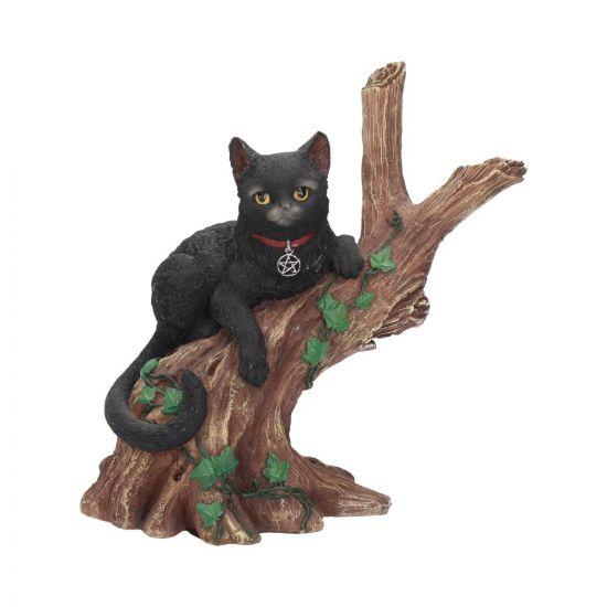 Onyx Cat in Tree